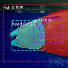IS-2019-0034-NeuralFishLocator.